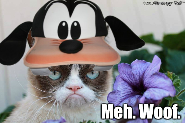 Grumpy-Cat-Dog.jpg
